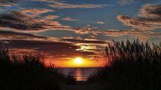 Benefits of Living Near The Ocean #sdbayadventures #sandiego