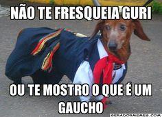 Diário de um Gaúcho Grosso: GUAIPECA DE GAÚCHO