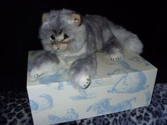 STEIFF LIZZIE MAINE COON CAT LIMITED EDITION BRAND NEW