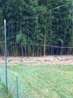 6 39 x 100 39 standard perimeter deer fence by deerbusters for Fishing line deer fence