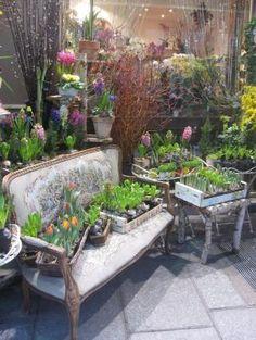 Paris....Flower shop... by christy