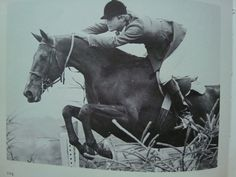 Idle Dice - perhaps the most famous off-the-track Thoroughbred in history. #OTTB  www.thewarmbloodhorse.com  horse
