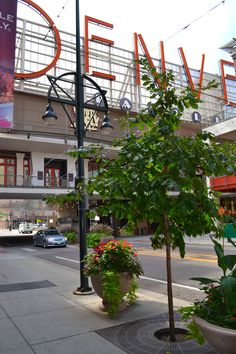 The Denver Pavilions is special because it is the home to a variety of shopping, restaurants, and entertainment.  Come experience Denver Pavilions for yourself!