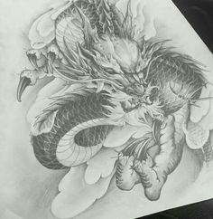 Asian Dragon art
