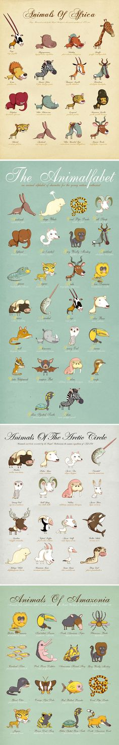 All types of animals