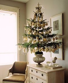 via Looking In: Potted Christmas Tree