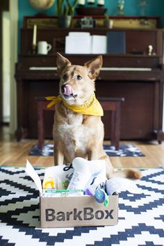 BarkBox delivers a monthly themed box of carefully selected dog goodies and (more importantly) a pawsome experience for you to share with your furry friend. All treats are full-size, all-natural, made in USA/Canada, and wheat/corn/soy free.