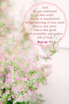 Romans 12:2 KJV.....And be not conformed to this world: but be ye transformed by the renewing of your mind, that ye may prove what is that good, and acceptable, and perfect, will of God.