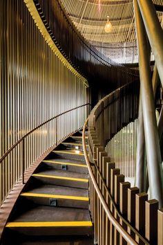 River Safari by DP Architects. Mandai, Singapore.