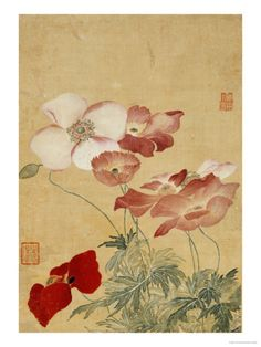 Poppies Print by Yun Shouping