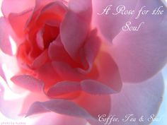 A rose for the soul
