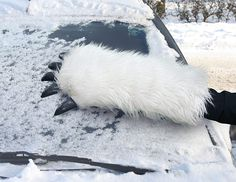 Keep the snow off your windshield, wampa-style, with the severed arm ice scraper ($25) that's amazingly cozy and machine-washable.
