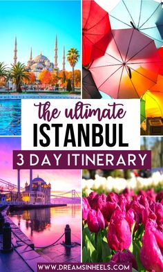 Istanbul is one of the most magical cities in the world, full of culture, rich history & the most delicious food. If you're wondering what are the best places to visit in Istanbul, I've got you covered with this 3 days in Istanbul Itinerary. Get ready to fall in love! | Istanbul things to do | Istanbul Travel | Istanbul Turkey Photography | Istanbul Photography | Istanbul City | Istanbul Aesthetic | Istanbul Things to do in | Turkey Travel Istanbul Photography | Turkey Travel Istanbul… Istanbul Travel, Istanbul City, Istanbul Turkey, Cappadocia Turkey, Europe Travel Guide, Asia Travel, Travel Destinations, Travel Abroad, Travel Guides