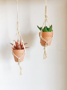 Car Plant Hangers - Cute Gift! Fake Plants, Little Plants, Car Rear View Mirror, Terracotta Pots, Little Gifts, Cute Gifts, Stocking Stuffers, Biodegradable Products, Bloom