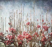 Spring Sky Line by Kim-maree Clark Skyline, Japanese, Fish, Texture, Spring, Painting, Art, Surface Finish, Art Background