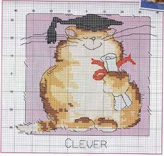 Cat February clever