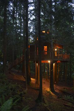The Sanctuary Treehouse. A very cozy treehouse with beautiful lighting solutions suspended in five Douglas firs. Designed and built by Wild Tree Woodworks. Located in western Washington State.