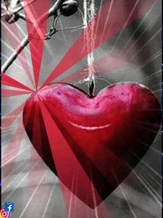 S Videos, Love Heart Images, Jack Daniels, Nativity, Prayers