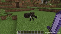 This Minecraft tutorial explains the Bane of Arthropods enchantment with screenshots and step-by-step instructions. The Bane of Arthropods enchantment increases your attack damage against mobs such as spiders, cave spiders, silverfish, and endermites. Silverfish, Minecraft Tutorial, Bane, Spiders, Enchanted, Spider