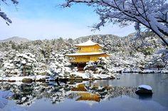 おはようございます。1/3の京都市内の朝は昨日に引き続き銀世界。昨日以上の積雪量です。ただ今、京都上空には青空が見えています。青空を背景にした雪の金閣寺はとても貴重です。予報では午前中は晴れ。お出かけの方はぜひ午前中に! #京都