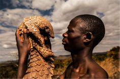INCREDIBLE portraits of a group of men who dedicate their lives to the most trafficked mammal in the world - the pangolin – have been released today as part of a campaign to raise awareness and funds for the protection of the species Animals Of The World, Animals And Pets, Slow Loris, Human Well Being, Weird Creatures, African Safari, People Around The World, Beautiful Creatures, Pet Birds