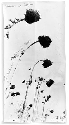 """Anselm Kiefer, """"Sommer in Barjac — Die berühmten Orden der Nacht"""" 2010, gouache on photographic paper."""