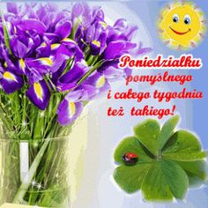 Herbs, Pictures, Humor, Twitter, Good Morning Funny, Polish, Photos, Humour, Herb