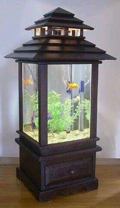 Lantern fish tank