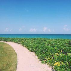 M A Y A K O B A  #walkingmexico #elcamaleon #golf #mexico #beach #madewithmap #spottly #nature by neaqmol