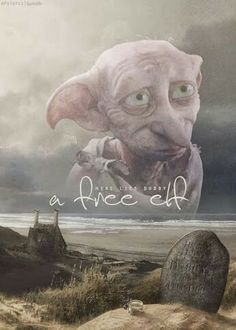 Dobby // can I have my own dobby, please? :)<---- THEY PUT A SMILEY FACE ON A PICTURE OF DOBBY'S GRAVE. D: NO. ONE SIMPLY DOES NOT DO THAT!!!!!!!!!!!!!!!!!!!