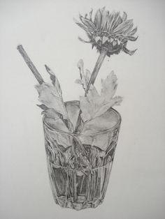 A level pencil study - preparatory work 'Reflections'