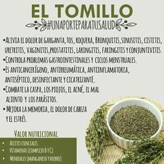 El tomillo Natural Medicine, Herbal Medicine, Holistic Medicine, Natural Cures, Natural Healing, Herbal Remedies, Health Remedies, Health And Nutrition, Health And Wellness