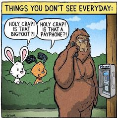 bigfoot sasquatch funny | Confusion between a BIGFOOT and PAYPHONE Funny Cartoonss
