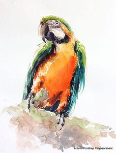Pájaro de loro guacamayo, acuarela de aves, aves arte, acuarela, tamaño 8 X 10 pulgadas para la decoración de la habitación y especial arte regalo No.190