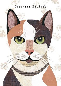 Japanese bobtail Cat Greetings Card