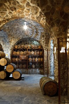 Jose cuervo winery, Tequila, Jalisco by  Luis Davilla