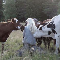 elinsvardh - Mjölkbonde som lever sin dröm i Smålands skogar.. Lite för fåfäng för det liv jag har