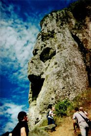 Cross Island trek with Pa, on Cooks Island.