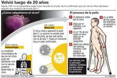 Vacunas que deben recibir los niños antes del 1º año: Vacuna: Antipolio oral, inmuniza contra Poliomielitis. Requiere tres dosis. A los 2, 4 y 6 meses. Necesita dos refuerzos, al año y a los 5 años.