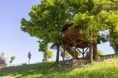 Aroma(n)tica TreehouseinMonferrato in San Salvatore Monferrato