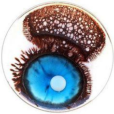 petri dish art