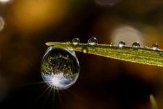 """Sun Reflection"" by K.Uddin"