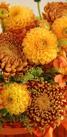Autumn chrysanthemum's and dahlia's
