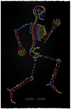 biology biologia Grafik- Anatomie Mensch, Humanmedizin // *graphic - anatomy of human, medicine Medical Anatomy, Human Anatomy And Physiology, Medical Terminology, Medical Assistant, Body Systems, Medical School, Nursing Students, Massage Therapy, Human Body