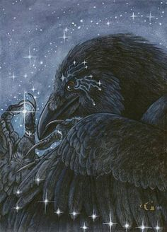 Raven's wings sparkle with magick as he contemplates his latest coveted jewel...