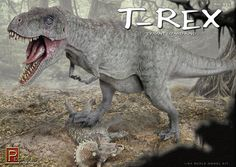 The colourful box art on the Pegasus Hobbies 1:24 scale model of Tyrannosaurus rex.