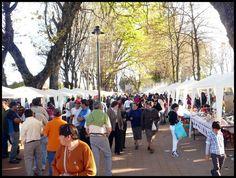 El Vecinal: Bulnes (CHILE), domingo 24 de julio de 2016
