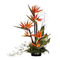 Bird of paradise flower arrangement ikebana 29 Ideas Exotic Flowers, Tropical Flowers, Beautiful Flowers, Birthday Flower Delivery, Same Day Flower Delivery, Ikebana, Decoration Buffet, Tropical Flower Arrangements, Birds Of Paradise Flower