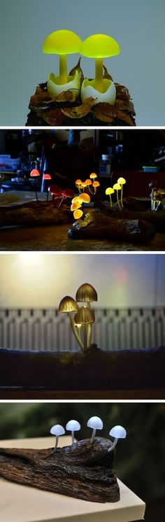 New Resin Mushroom Lamps Embedded with LEDs on Driftwood by Yukio Takano