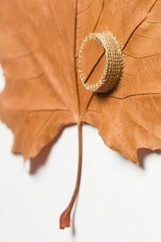 Susanna-Bauer-Leaf-Art-6